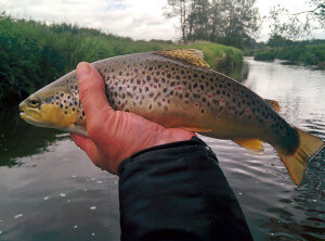 river fly fishing course